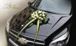 Déco voiture ROME - 120€