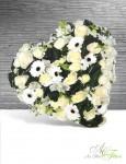 COEUR Roses, germini - 200€